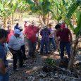 A Prefeitura de São Gonçalo do Rio Abaixo realizou na última semana mais um Dia de Campo com produtores rurais do município inseridos no Programa Gerando Frutos, para capacitação do […]